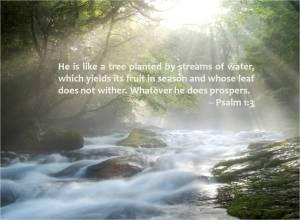 psalm-1-3